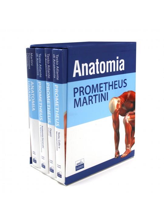 Anatomia Umana - cofanetto