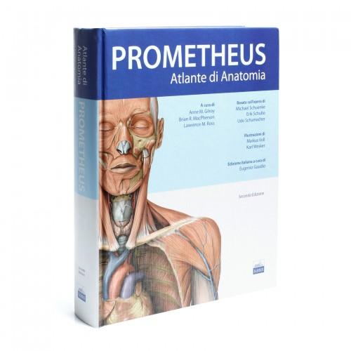 Prometheus - Atlante di Anatomia